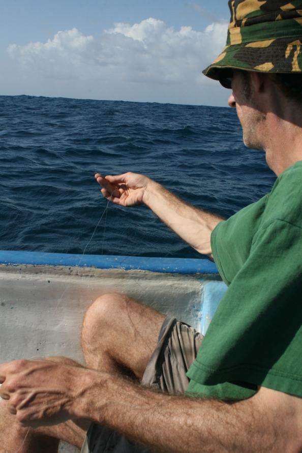 Vissen met de handlijn