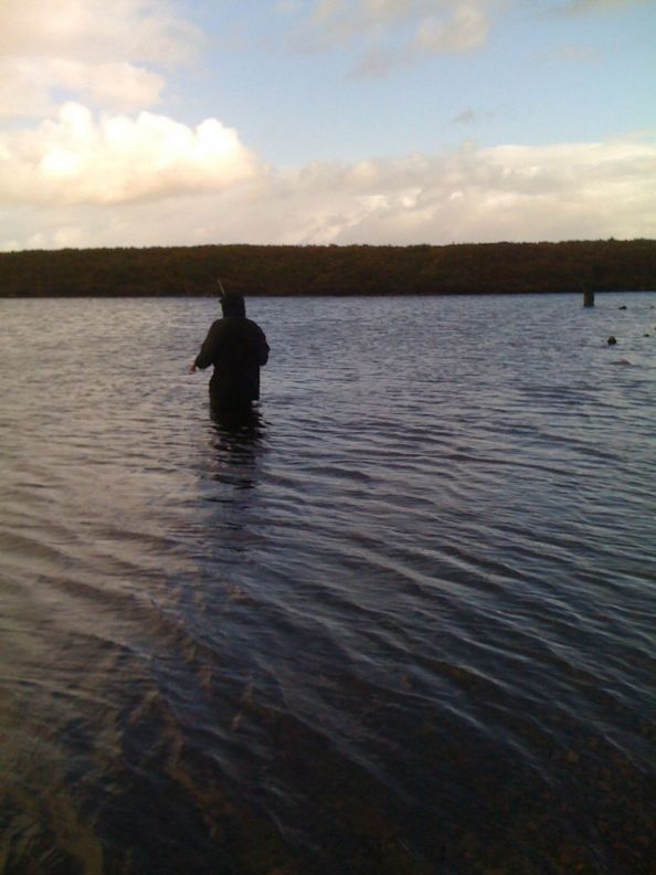 IMG_1173 met vlieg in het meer sta