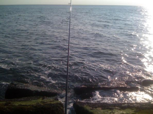 Krabbenwater!