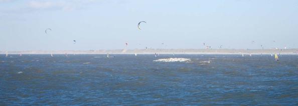 ook-veel-bij-WIjk-aan-Zee