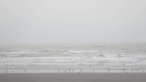 grauwe-grijzigheid,-geen-regen,-maar-wel-natte-lucht