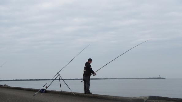 Bas-wint-met-114-vissen