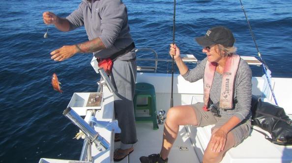 IMG_2607-petra-grouper